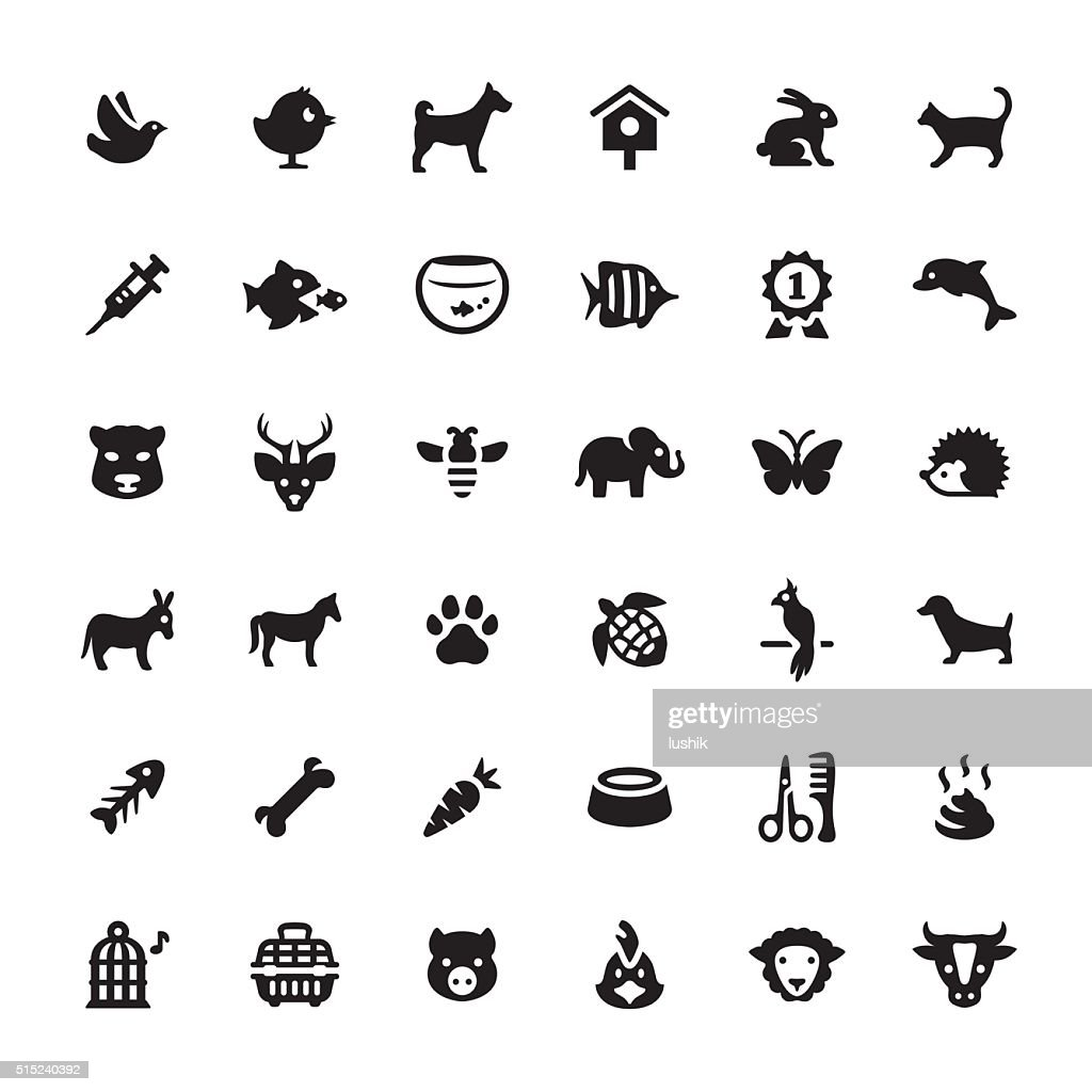 Zoo and Pets vector symbols and icons : stock illustration