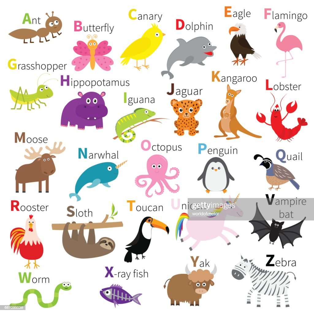 Zoo animal alphabet. Cute cartoon character set. White background. Baby children education. Butterfly, dolphin, flamingo, jaguar, lobster, penguin sloth kangaroo bat eagle unicorn.