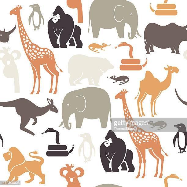illustrations, cliparts, dessins animés et icônes de motif animal du zoo - koala
