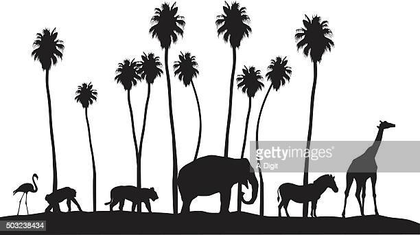 zoo animal silhouettes - flamingo stock illustrations, clip art, cartoons, & icons