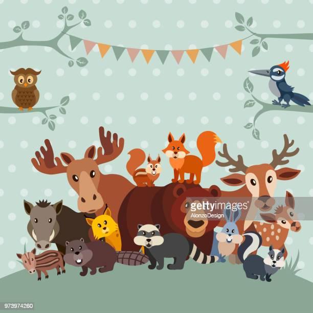 zoo party invitation - woodland stock illustrations