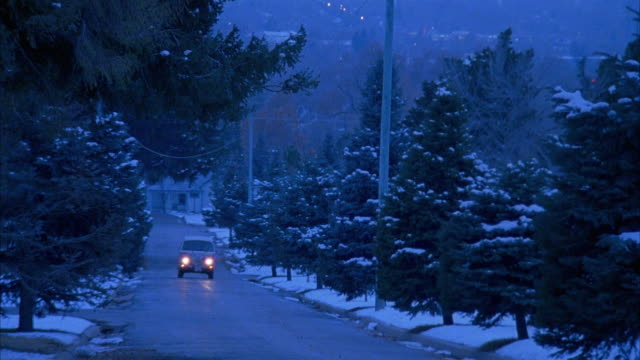 WIDE ANGLE OF VOLKSWAGEN BUS DRIVING ON ROAD TOWARDS POV. VAN TURNS SHARPLY AND COMES TO STOP SHOWING COLORFUL HIPPIE PAINT JOB. SNOW COVERS TREES LINING ROAD. CAR STUNTS.