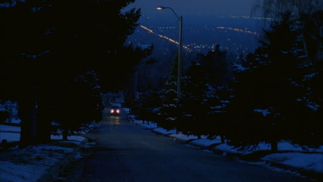 WIDE ANGLE OF VOLKSWAGEN BUS DRIVING ON ROAD TOWARDS POV. VAN TURNS SHARPLY AND COMES TO STOP SHOWING COLORFUL HIPPIE PAINT JOB. HEADLIGHTS TURN OFF. SNOW COVERS TREES LINING ROAD. CAR STUNTS.