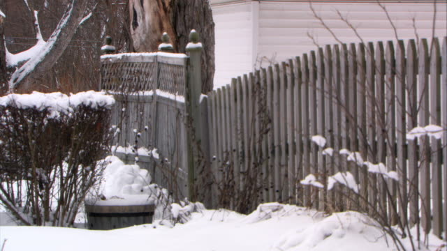 medium angle of wooden picket fence on side of house. snow covers ground and bushes. pile of snowballs in bg near wooden bucket. garage or house in bg. could be backyard. - picket fence stock videos & royalty-free footage