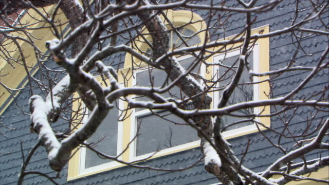 stockvideo's en b-roll-footage met pan down from up angle of attic window and bare tree branches to second story windows. eave over front door visible. winter. - bare tree