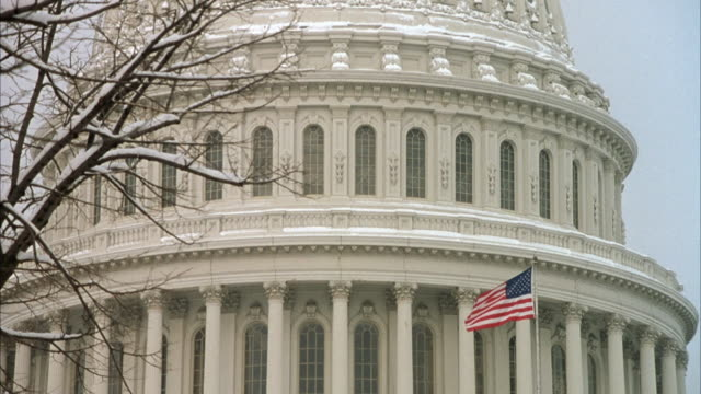medium angle of capitol during winter. see snow on building and trees. shot pans down building. see flag pole with american flag in front. - 旗棒点の映像素材/bロール
