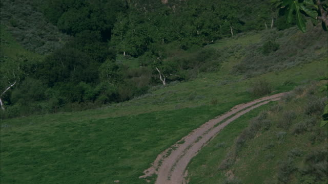 vidéos et rushes de wide high angle down of grass on hills, curved trails from right to center. six-horse drawn carriage appears from right on trail. shot follows carriage approaching bottom. - voiture attelée