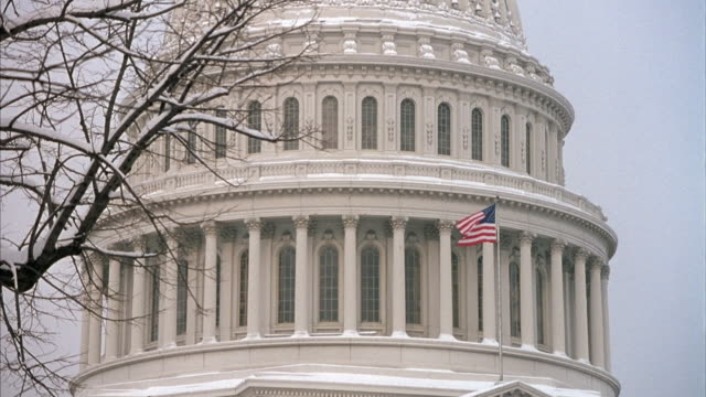 medium angle of dome of capitol building. see part of bare tree branch covered with snow at left. - capitol hill stock videos & royalty-free footage