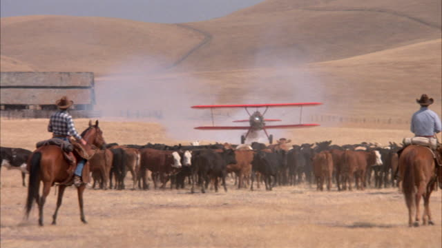 medium angle of biplane. plane  lowers elevation across hills in desert, touches ground twice next to barn where cows run to right. cowboys on horses appears wave and biplane gets back in air. - scheune stock-videos und b-roll-filmmaterial