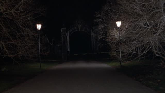 PROCESS PLATE STRAIGHT BACK DRIVING ON NARROW ROAD WITH BARE TREES AND ORNATE STREET LIGHTS LINING ROAD ON BOTH SIDES. POV PASSES THROUGH LARGE IRON GATE AT BEGINNING, POSSIBLY ENTRANCE TO CEMETERY, PARK OR ESTATE.