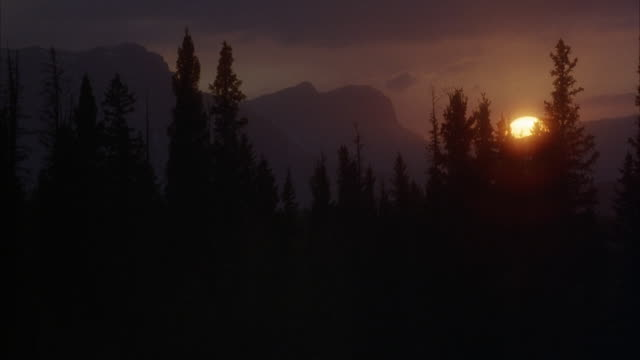 vídeos y material grabado en eventos de stock de medium angle of sun setting behind mountains with pine trees in foreground in wilderness. half of sun has already set behind mountains. - conífera