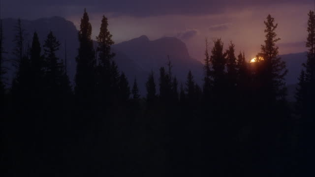 medium angle of sun setting behind mountains with pine trees in foreground in wilderness. see only sliver of sun left above mountains. - pine stock videos & royalty-free footage