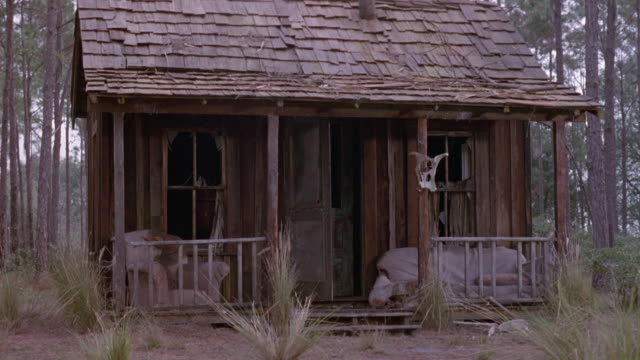 vídeos de stock e filmes b-roll de medium angle of one story rundown lower class shack, could be cabin, in forest. see side of man in left foreground, then smoke starts inside house, possibly during fire. - cabana de madeira