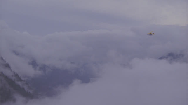 vídeos de stock e filmes b-roll de aerial of small private propeller plane with pontoons for water landing flying over pine tree forest or woods. could be seaplane. fog or clouds. could be in mountains. - pine