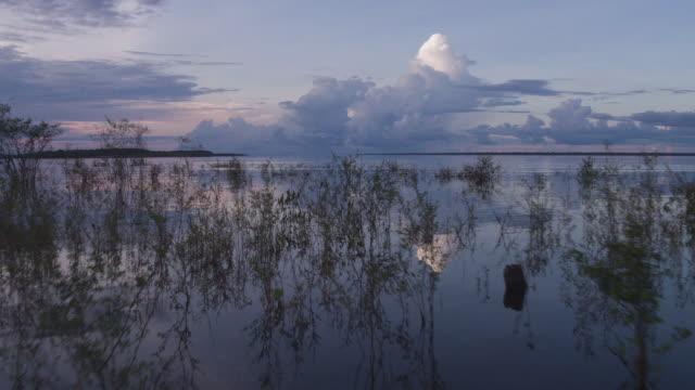 paradisiac view of angra dos reis - sjö bildbanksvideor och videomaterial från bakom kulisserna
