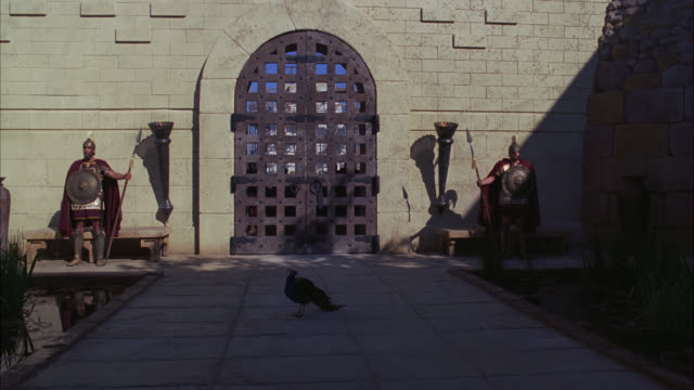 wide angle of iron castle gate with peacock bird standing on pathway. two ancient roman guards or soldiers. biblical times. - biblical event stock videos & royalty-free footage