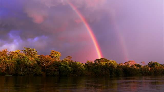 vidéos et rushes de beautiful rainbow - pink clouds - jungle