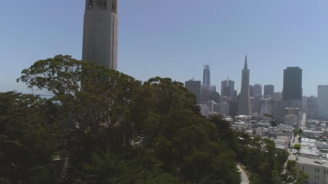 sf coit tower - coit tower stock videos & royalty-free footage