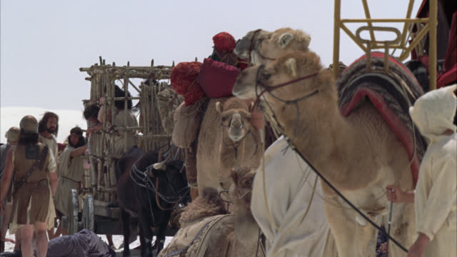 pan down from sky to desert caravan selling slaves to roman soldiers. camels carrying packs. people locked in cage in bg. oxen pulling cage of people. soldiers. sand dunes in bg. - roman stock videos and b-roll footage