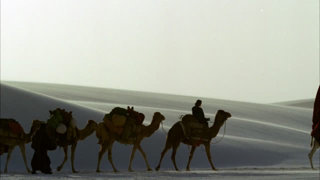 pan left to right of people traveling through desert with camels, oxen, donkeys and horses in a caravan. cart of prisoners or slaves. could be nomadic people. could be white sands new mexico. sand dunes. - cart stock videos & royalty-free footage