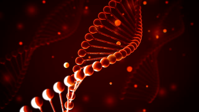 4k dna (loopable) - rna stock videos & royalty-free footage