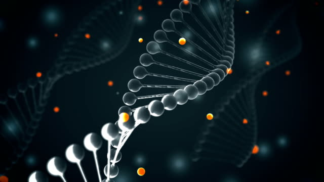4k dna (loopable) - biochemistry stock videos & royalty-free footage