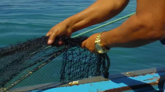 vídeos de stock, filmes e b-roll de brazilian fishermen pull fishing net onto boat - pescaria