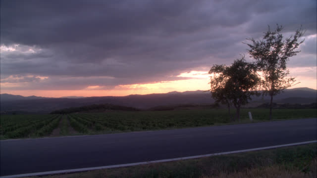 vidéos et rushes de medium angle of car driving on country road through grape or wine vineyards. countryside or rural area. could be farmland. sunset. - route de campagne
