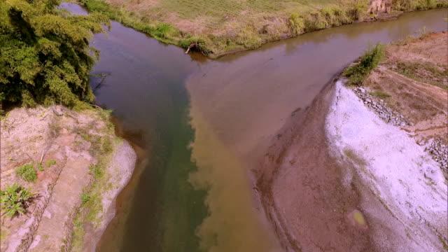 vídeos de stock e filmes b-roll de brazil - polutted river - poluição de água