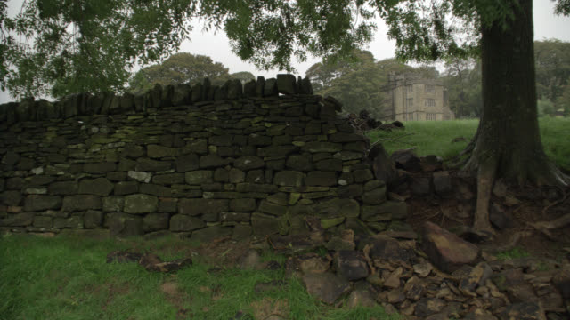 WIDE ANGLE OF THREE STORY UPPER CLASS STONE HOUSE, ESTATE OR MANOR. STONE WALL IN FG. GRASS FIELD AND TREES. COUNTRYSIDE. RURAL AREA. COULD BE PART OF CASTLE, CRENELLATION ON ROOF.