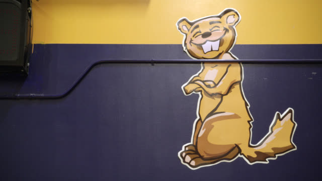 medium angle of sign or painting on wall in high school gymnasium of woodchuck or beaver. could be school mascot. - 美術工芸品点の映像素材/bロール