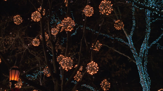 """pan down from christmas lights in trees to """"tavern on the green"""" in central park. street lamps. could be santa' village in bg. people walking around area. - tavern on the green stock videos & royalty-free footage"""