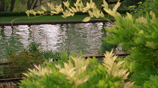 wide angle of moat or pond in front yard garden or mansion. - moat stock videos & royalty-free footage