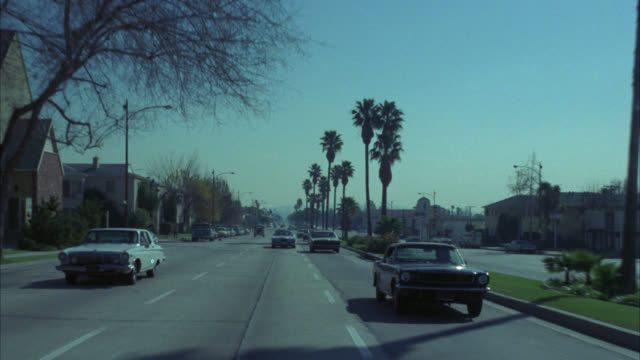 vidéos et rushes de wide angle moving pov of cars driving down street. pov from back of car. palm trees line urban street. could be middle class residential area. camera followed by blue mustang. apartment buildings line street. - palmier