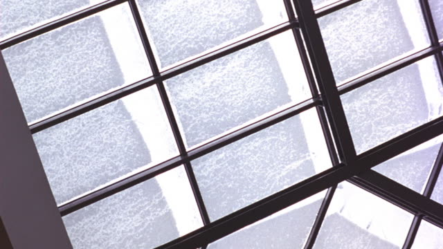 UP ANGLE OF SKYLIGHT IN LOBBY AREA OF SHOPPING MALL OR PAVILION. WINDOWS COVERED IN SNOW. COULD BE OFFICE BUILDING OR GOVERNMENT BUILDING.