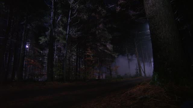 vídeos y material grabado en eventos de stock de wide angle of a moonlit forest dirt road. - carretera de campo