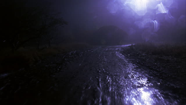 wide angle driving pov through dirt or mud road. could be woods or forest. moonlit. - woods stock videos & royalty-free footage