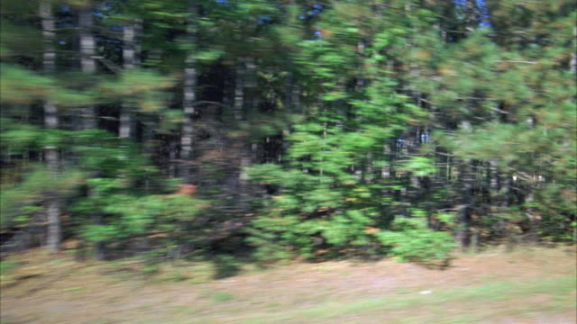 vídeos de stock, filmes e b-roll de process plate 3/4 right back of driving through countryside, suburbs, farmlands, or rural areas. see dense woods and forests, small dirt driveways and other roads, and undeveloped landscapes. - placa de processo