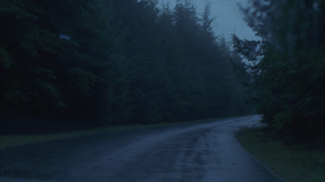wide angle moving pov straight forward from right side of car driving on two lane road wet from rain. windshield wipers are on. pine trees on both sides of road. could be in forest or wood, mountains. pov drifts into opposite lane in front of car with hea - canada stock videos & royalty-free footage