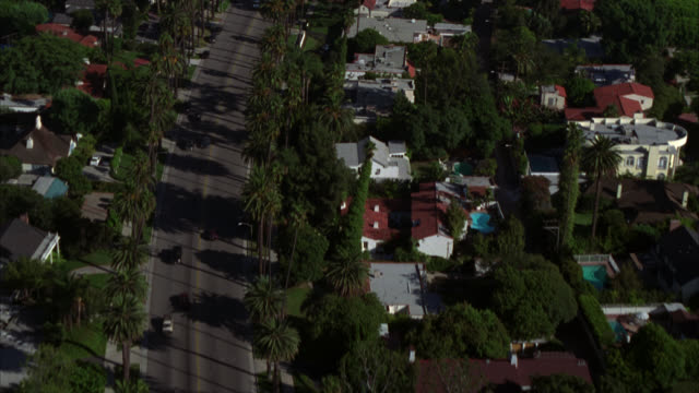 vidéos et rushes de aerial of residential neighborhood in beverly hills. pam trees line street in upper-class neighborhood with houses. camera pans up to city. swimming pools in backyards. - palmier