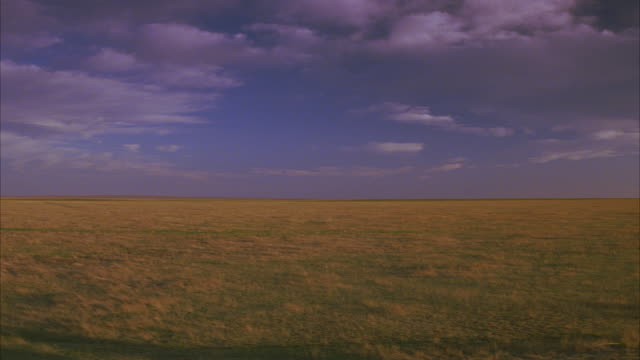 wide angle of a light brown prairie under a cloudy blue sky.  could be the southwest, texas, or mexico.  could also be kansas or the midwest.  big sky country.  a rural area landscape in the countryside. grasslands. - prärie stock-videos und b-roll-filmmaterial