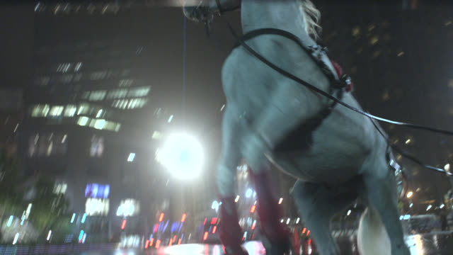up angle of white horse with bridle and reins rearing back onto hind legs. streets wet from rain. animals. midtown manhattan, west side. columbus circle. 22 fps. - bridle stock videos & royalty-free footage