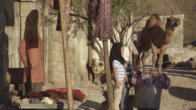 MEDIUM ANGLE OF MIDDLE EASTERN MARKET PLACE. WOMEN WEARING HIJAB HEADWEAR. CHILD STANDS WITH MOTHER. CAMELS TIED UP. CLAY OR STONE HOUSES IN BG. DUST OR DESERT.