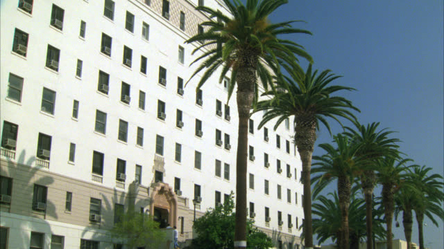 vídeos de stock, filmes e b-roll de wide angle of multi-story office building, apartment building or government building. people walking on stairs leading to entrance. palm trees in front of building. - palmeira