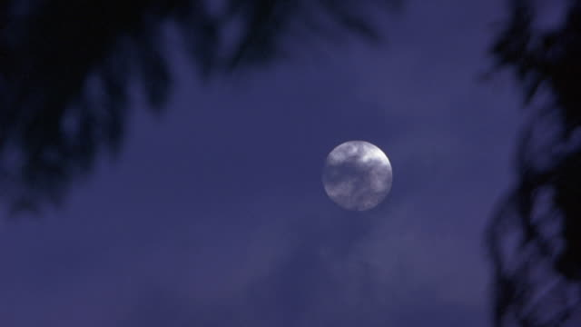 est medium angle on clouds covering full moon. see tree leaves in fg. - full moon stock videos & royalty-free footage