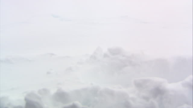 pan up from close angle of footprint in snow to wide angle of field covered in snow. building in bg. could be school or university campus. bushes, shrubs, or brush stick out of snow. could be rural area. winter. windy and overcast. - non urban scene stock videos & royalty-free footage