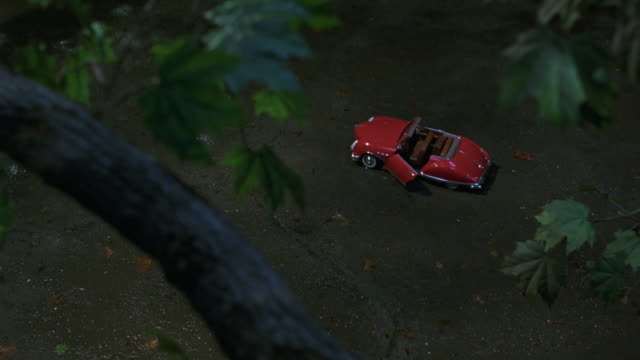high angle down of red remote control convertible car  with driver door open on pavement. pov from tree above car. see branch and leaves in foreground. cat runs across branch. - ラジコン点の映像素材/bロール