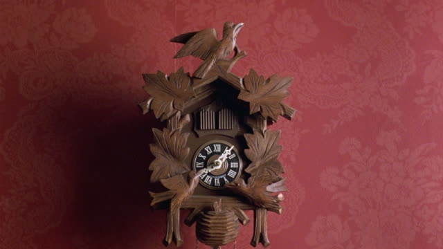 vidéos et rushes de medium angle establish of cuckoo clock. see hands set at 8:07. see leaves and wooden birds carved on front of clock. see red wallpaper in background. - coucou
