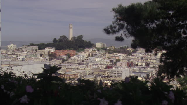 medium angle of coit tower from a distance. see multi-story buildings surrounding coit tower. - north beach san francisco stock videos & royalty-free footage
