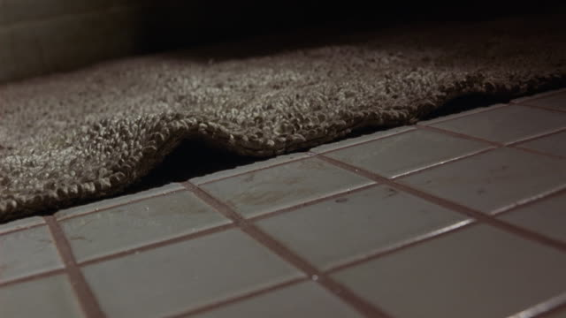 close angle of tiled bathroom floor with bathmat shows cockroach crawl across floor, under rug. insects. - ゴキブリ点の映像素材/bロール